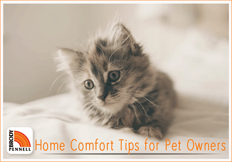 Home Comfort Tips for Pet Owners
